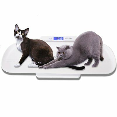 Multi-Function Digital Pet Scale to Measure Dog and Cat Weight Accurately up to