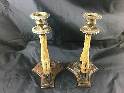 Antique French pair of deer candlestick hunting decor candle holder chandeliers
