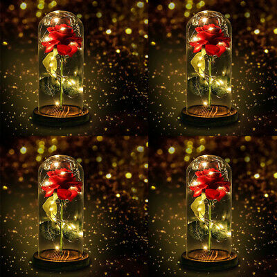 Beauty And The Beast Enchanted Rose Glass Lamp Dome Led Red Rose Lighted Gift US