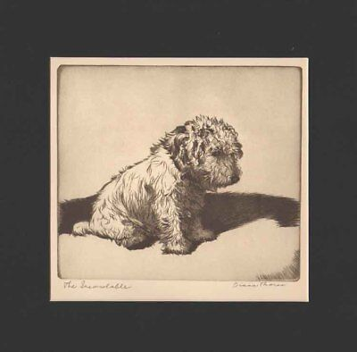 THE INCONSOLABLE DOG Print 1935 by Diana Thorne SEALYHAM TERRIER Black Mat 12X12