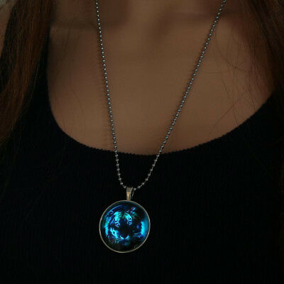 Magical Unisex Fairy Tiger Glow in the Dark Stainless Steel Pendant Necklace