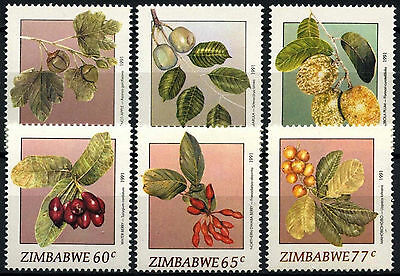 Zimbabwe 1991 SG#810-5 Wild Fruits MNH Set #D50826