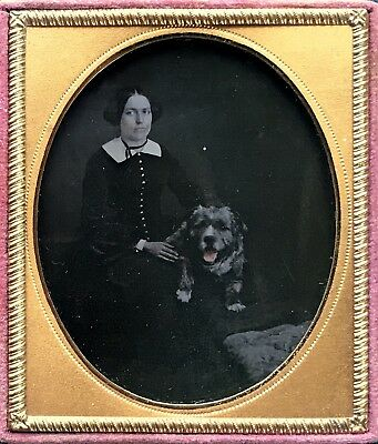 """1/6 Plate Ambrotype - A Lady & Her Best Friend - """"scruffy"""" With A Tinted Tongue"""