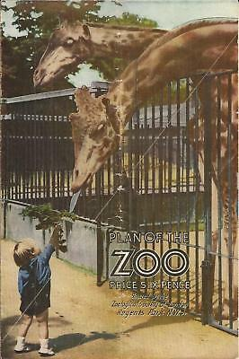 1953 Plan Of The Zoo Zoological Society Of London