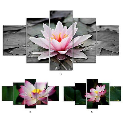Lotus Flower Plant Canvas Print Painting Framed Home Decor Wall Art Poster 5Pcs