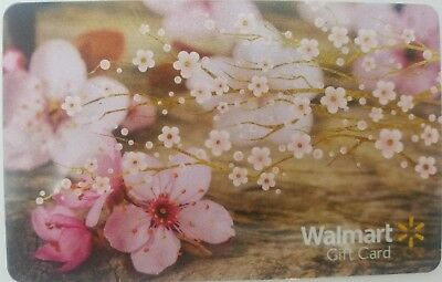 Walmart Gift Card giftcard $25 value with cute envelope + personalized message