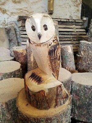 Chainsaw carved / carving Owl