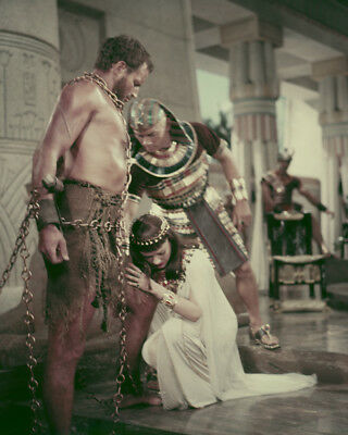 Ten Commandments Charlton Heston Yul Brynner bare chested in chains 8X10 Photo