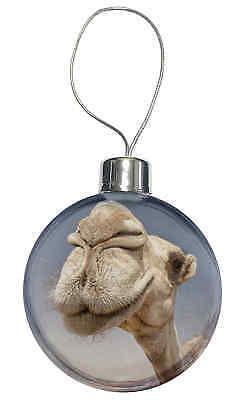 Camels Intrigued by Camera Christmas Tree Bauble Decoration Gift, CAM-1CB