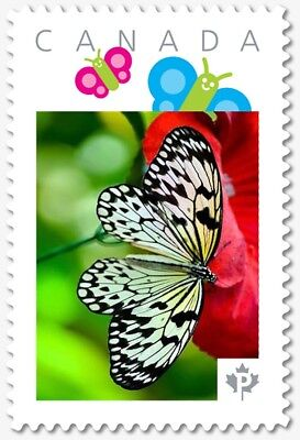 BUTTERFLY = White = Personalized Picture Postage stamp Canada 2018 [p18-07s16]