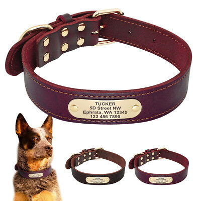Top Genuine Leather Personalised Dog Collar Engrave for Labrador Pitbull Large