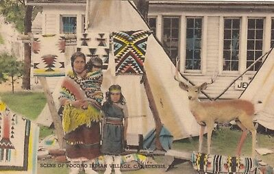 Scene of Pocono Indian Village, Canadensis, Penn, USA, old postcard, unposted