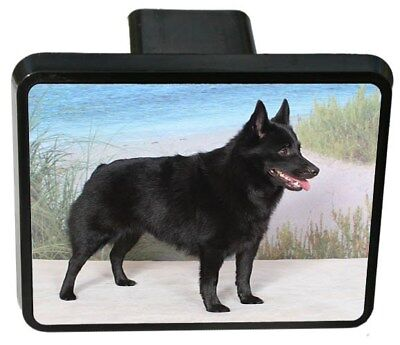 Schipperke Trailer Hitch Cover
