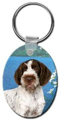 German Wirehair Pointer Key Chain