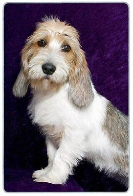 Petit Basset Griffon Vendeen Cutting Board, Small