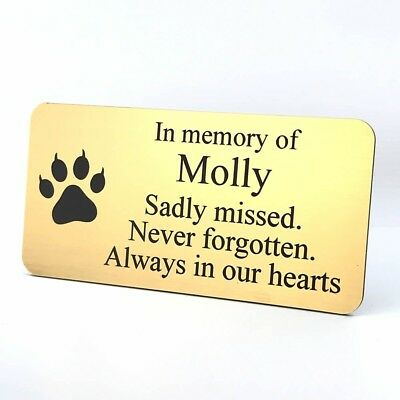Engraved Memorial Plaque Pet Cat Brushed Polished Brass Gold Silver Grave Bench