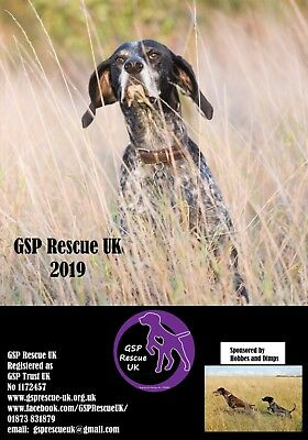 German Shorthaired Pointer Rescue UK. 2019 Calendar
