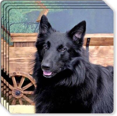 Belgian Sheepdog Rubber Coaster Set