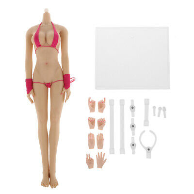 1/6 Busty Female Seamless Action Figure Pale Peau Corps fit Hot Toys Phicen
