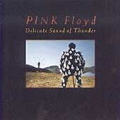 Pink Floyd : Delicate Sound of Thunder CD