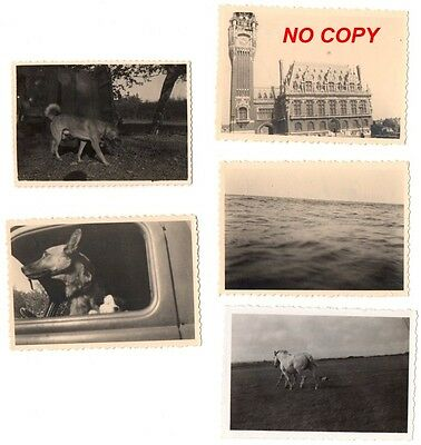 Lot de 5 photos WW2 Calais et Cap Gris-Nez Pas-de-Calais allemand