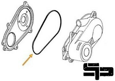 Ranger Rzr Xp 900 1000 570 Manual Cam Chain Tensioner And Gasket