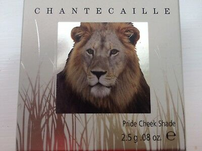 Chantecaille Philanthropy Cheek Colour Pride Limited Edition Sold out!