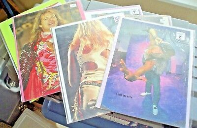 DAVID LEE ROTH PICTURES & ADVERTISEMENTS COLLECTION ALL BAGGED & BOARDED 6piece