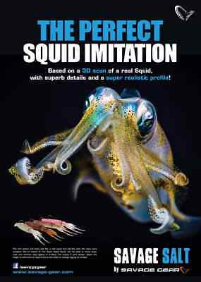 Savage Gear New 3D Swim Squid Lures Ready To Fish Crazy Price