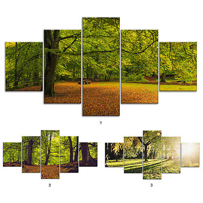 Oak Tree Forest Canvas Print Painting Framed Home Decor Wall Art Poster 5Pcs