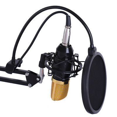 Professional Studio Recording Condenser Microphone Kit with Accessories J1J0