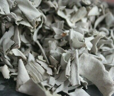 WHITE SAGE Salvia apiana Dried PURIFYING HERB Leaf SMUDGE SMUDGING Loose Bulk