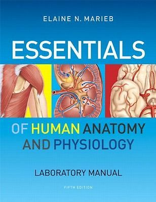 LOT 2 BOOKS Anatomy Physiology II Lab Manual Lecture Notes