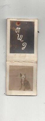 old PHOTO MATCHBOOK COVER Boston Terrier dog initials CMD
