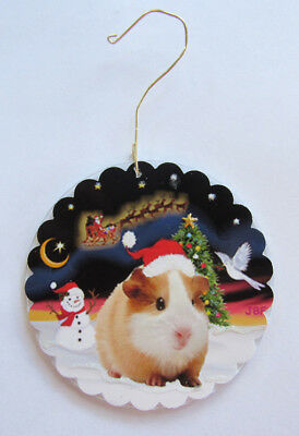 """NEW Double Sided Ornament:  Guinea Pig in Santa hat -""""Night Flight"""" by artist"""
