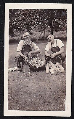 Antique Vintage Photograph Men in Overalls With Baskets of String Beans & Squash