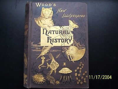 WOOD'S NEW ILLUSTRATED NATURAL HISTORY ~ ca. 1900 VINTAGE HARDCOVER  J.G. Wood