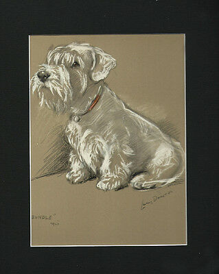 Sealyham Puppy Dog 1946 Cute Matted Print by Lucy Dawson 9x12 Mat