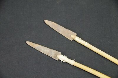 Two Plains Indian Arrows with metal points, Native American, c.1880