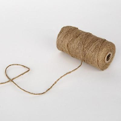 1 Roll Brown Jute Hemp Rope Twine String Cord Shank Craft Making 100M DIY Craft