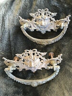 Antique Brass Ornate Gilt Lion Head Drawer Pull Early Victorian Price Reduced