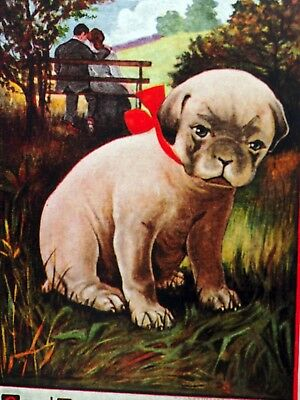 Antique 1913 postcard Pug puppy dog rejected by lovers  Lab retriever Anatolian*