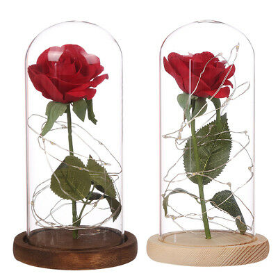 WR Beauty And The Beast Red Rose In Glass Dome LED Lamp Birthday Valentine Gifts