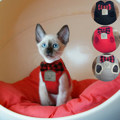 Mesh Bowtie Cat Harness and Leash Small Cat Walking Harness Pet Kitten Clothes