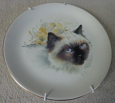 Chocolate Point Siamese Gold Rim Plate Monika Heller-Cole ~ FREE SHIPPING