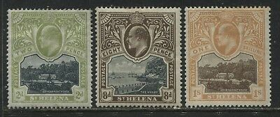 St.Helena KEVII 1903 2d, 8d, and 1/ mint o.g.