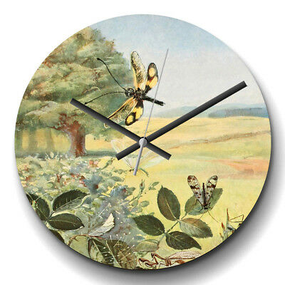 Large Wall Clock Silent Vintage Paul Flanderky German Lacewings Retro Animal