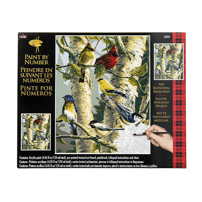 Plaid Creates Paint by Number Kit (16 by 20-Inch), 22078 Song bird Favorites