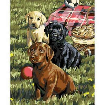 Plaid Creates Paint by Number Kit 16 by 20-Inch, 22079 Puppy Picnic
