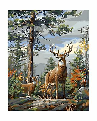 PLAID CREATES PAINT BY Number Kit 16 By 20-in 22083 Standing Proud FREE SHIP